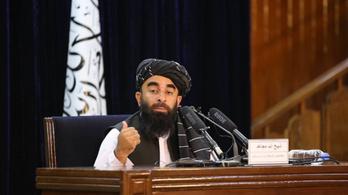 A tálibok fel akarnak szólalni az ENSZ-közgyűlésben