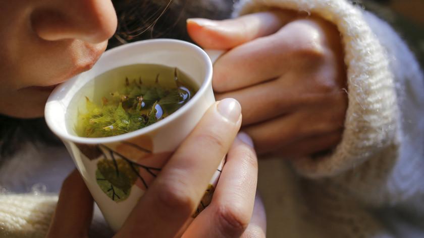 Ezek a gyógyteák legyenek mindig otthon, ha elkezdenél a gyógynövényekkel ismerkedni
