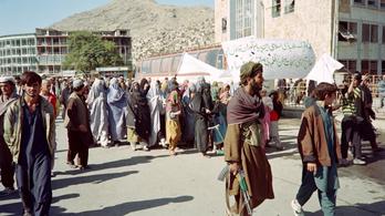 A tálibok volt igazságügyi minisztere szerint a csonkolások szükségesek a rend fenntartásához