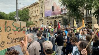 Két év után rendeztek újra klímasztrájkot Budapesten