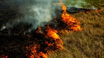 Füst és bűnhődés: szörnyű büntetés várhat az avarégetőkre