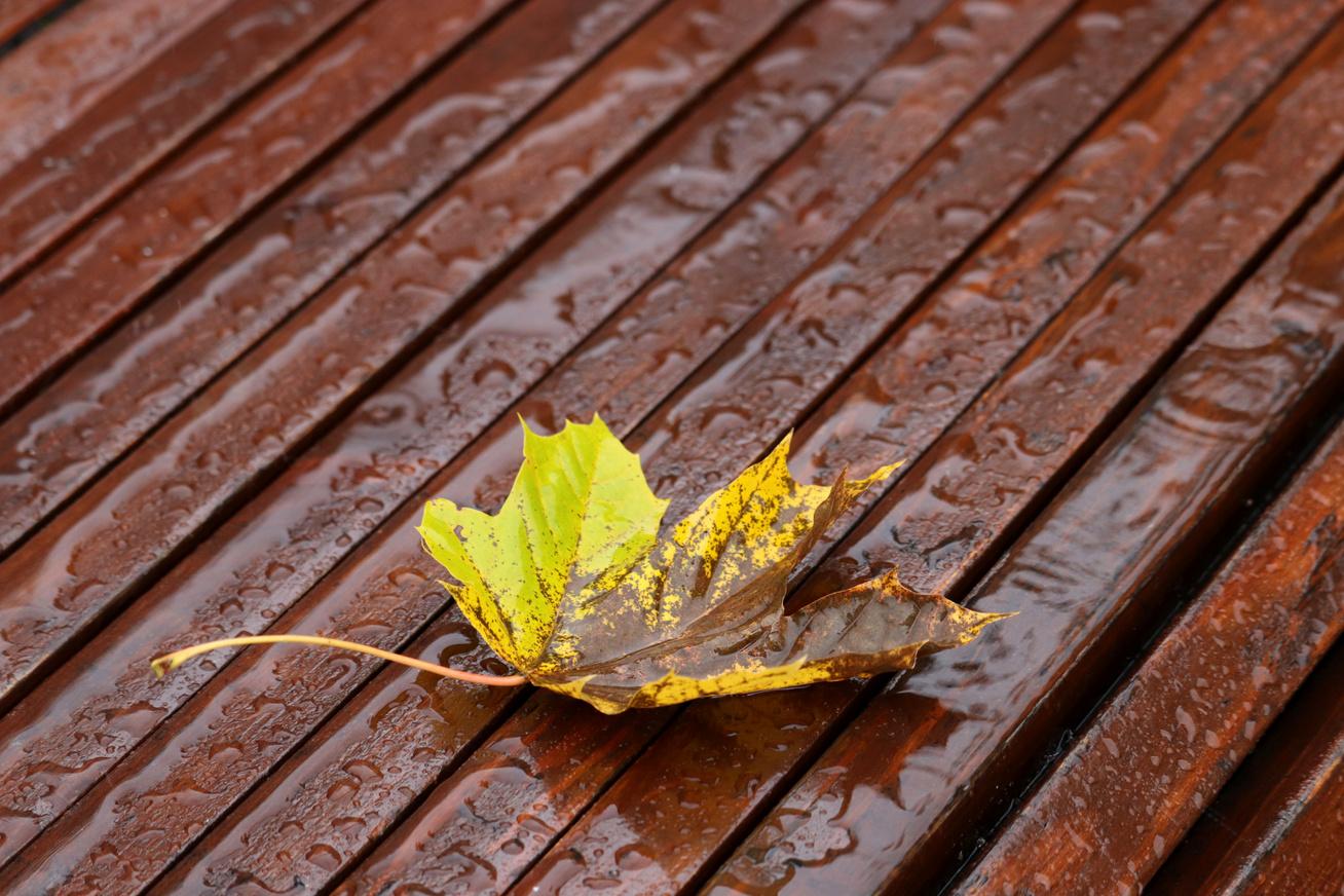 idő-ősz1