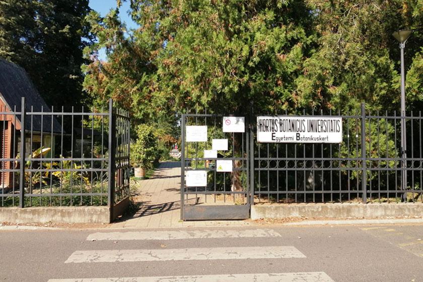 A debreceni botanikus kert 200 évre tekint vissza, elődjét a Déri Múzeum helyén alapították, a Református Kollégium felügyelete alatt állt. A helyét már 1807-ben kijelölték, a természettudományos képzést szolgálta 1844 és 1922 között.