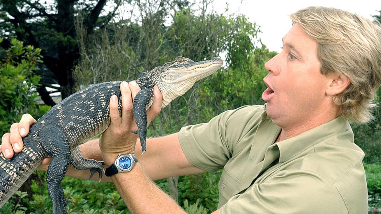 krokodilvadász nyitó