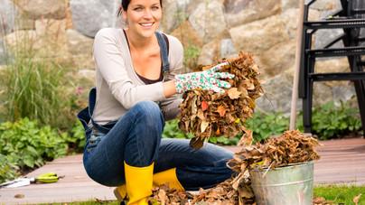 A legfontosabb őszi teendők a kertben, amiket most kell elvégezni