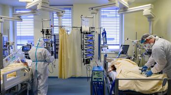 Koronavírus: 31 halott három nap alatt Magyarországon