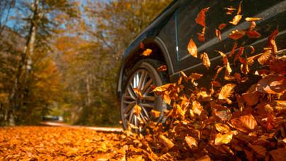 Autózás ősszel: 5 veszélyforrás, amiből könnyen baleset származhat