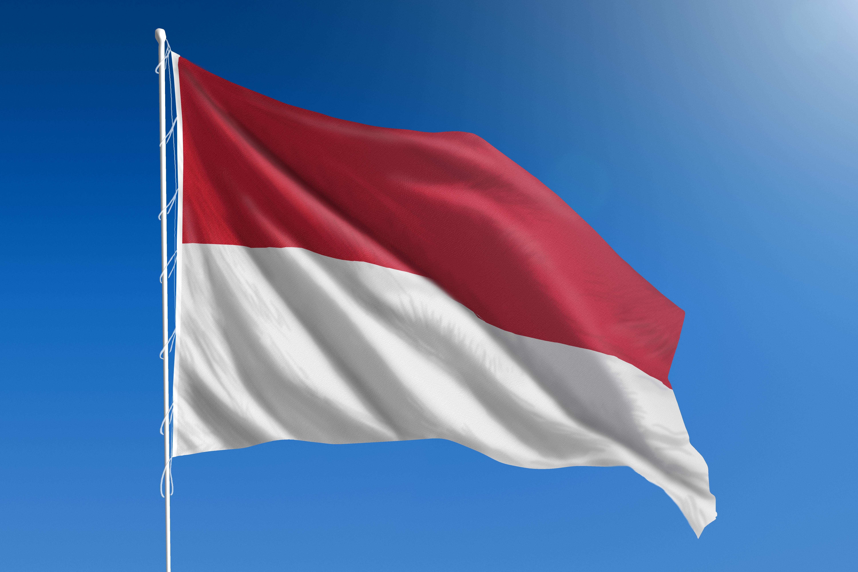 Melyik ország zászlója látható a képen?