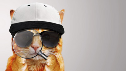 Kiborg macskával kémkedett volna a CIA a szovjetek után