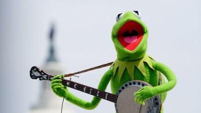 Egy bizarr elmélet: a <i>Muppet Show</i> békája felelős 9/11-ért?