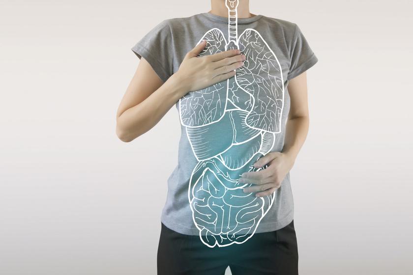 A probiotikumok nem csak a bélflórát támogatják: segítik az alvást, és védik a tüdőt is