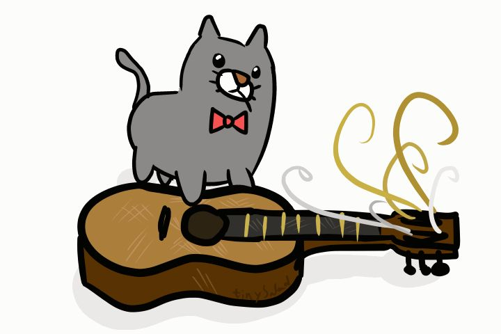 gitáros cica.gif