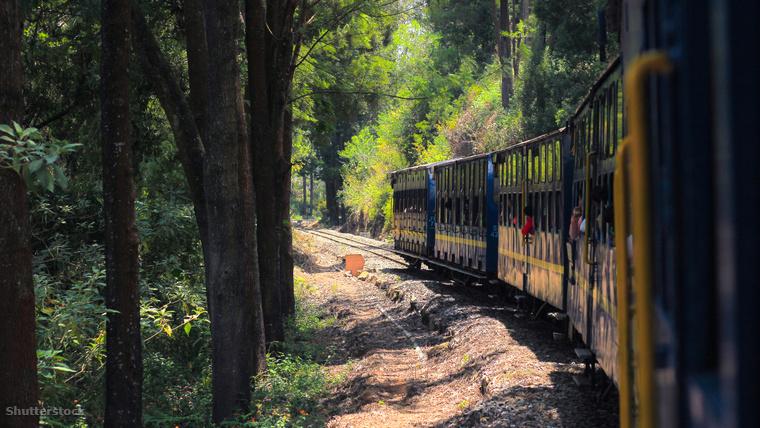 A Nilgiri Ázsia legmeredekebb pályáján kúszik fel a magasba.