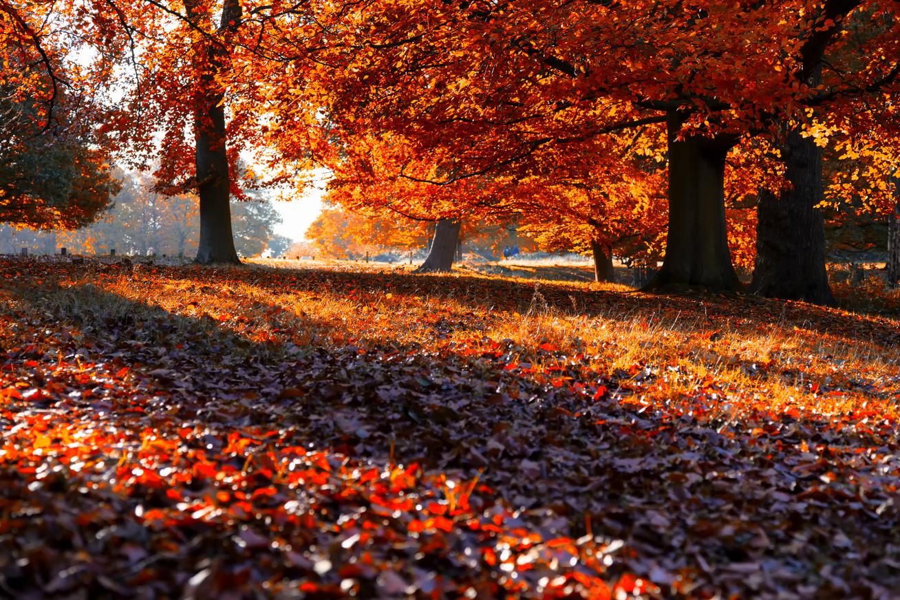 őszi-időjárás2