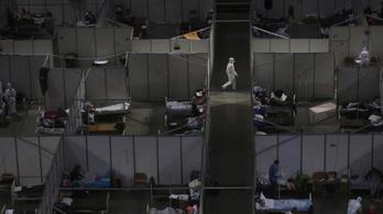 Szerbiában harminc százalékkal nőtt a mentális betegek száma