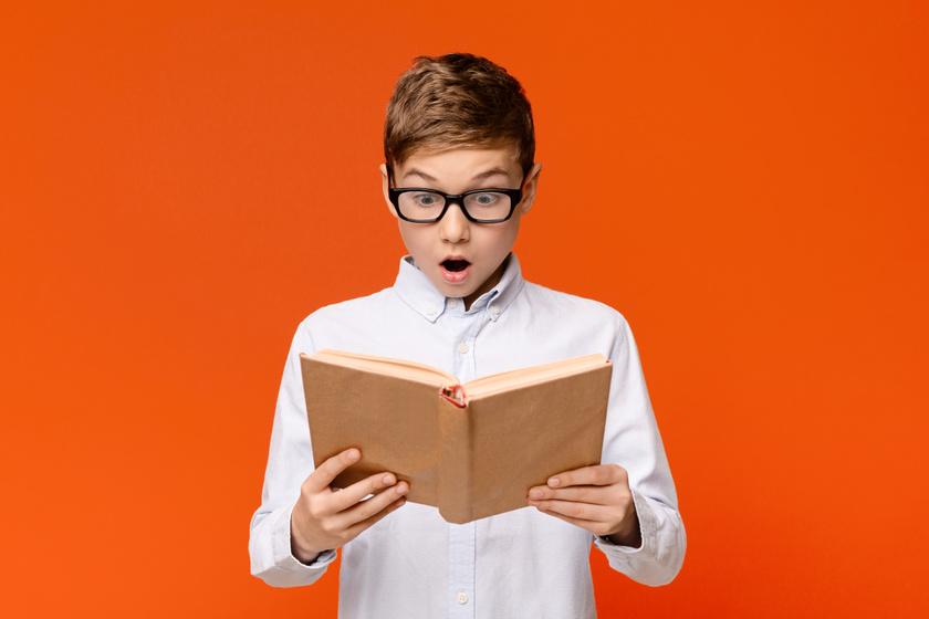 A kedvenc ifjúsági könyvek kvíze: ki írta a Tüskevár című regényt? - 10 kérdésből mennyire tudod a választ?