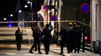 Íjból kilőtt nyílvesszőkkel gyilkolt meg több embert egy férfi Norvégiában