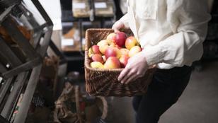 Ez a legjobb módja az almák tárolásának úgy, hogy akár egy hónapig is elálljanak