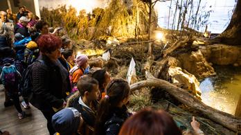 Kovács Zoltán szerint rekordok dőltek meg, kétmillióan látták a vadászati kiállítást