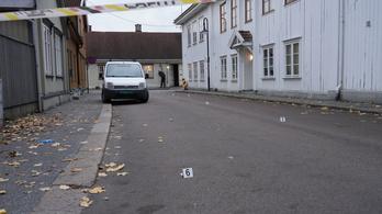 Vádat emeltek a Norvégiában nyíllal gyilkoló dán ámokfutó ellen