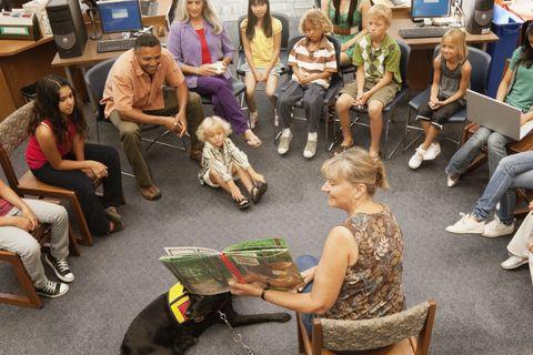 Ebben a városban keresd az ország első kutyabarát könyvtárát!