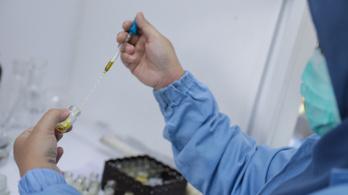 Készül a magyar koronavírus elleni gyógyszer