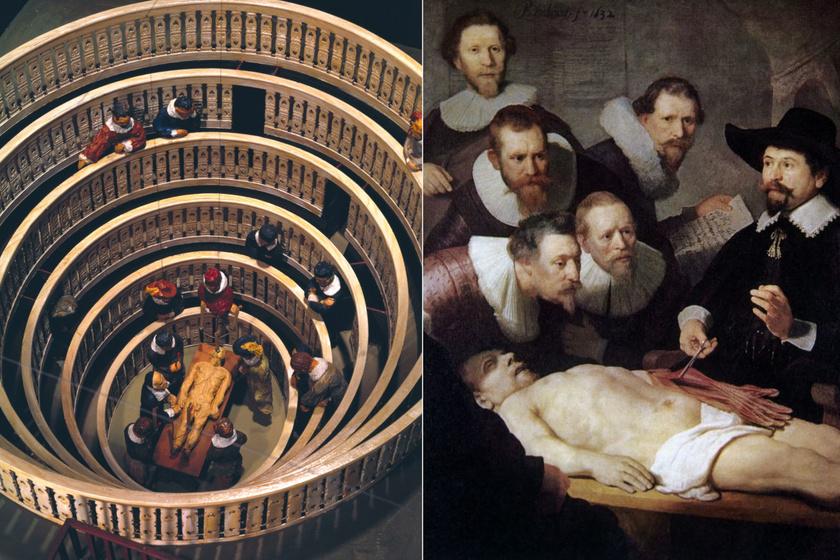 Nyilvános boncolásokat tartottak a népszerű anatómiai teátrumokban: az elsőt a 16. században létesítették Padovában