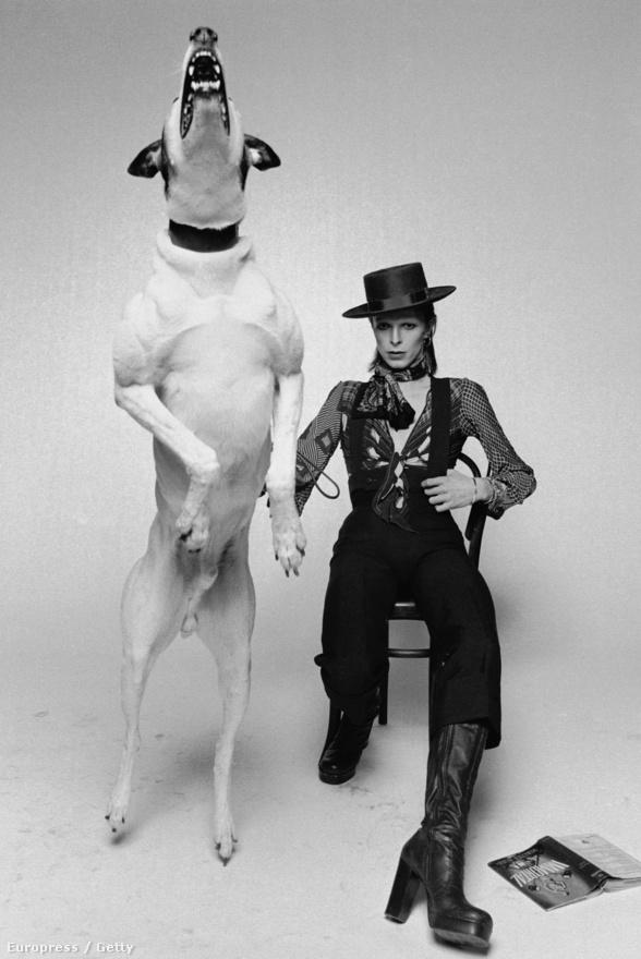 Az 1974-es Diamond Dogs című lemez borítójához készült ez a fotó Londonban.