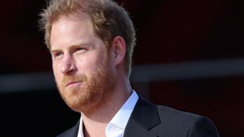 Károly hercegnek van mitől félni, készül Harry herceg önéletrajza