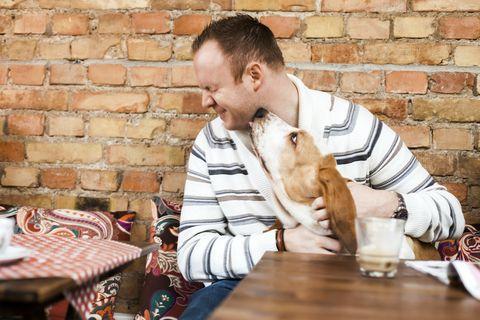 Egy görög kávézó azért marad nyitva, hogy a kutyusok tudjanak hol aludni