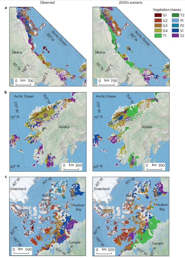 Ezek a változások várhatók az Északi-sarkkörnél. A zöld szín több fát, a lila több bokrot jelent.