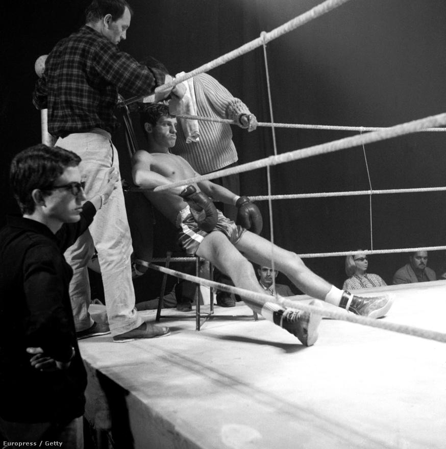 Évtizedeken át tartotta magát a legenda, hogy Belmondo orrát egy bokszmeccsen törték el. Valójában egy iskolai verekedésben sérült meg. Imádott bokszolni, csak a színészetet szerette jobban. Jean-Pierre Melville filmjében összekapcsolhatta a kettőt.