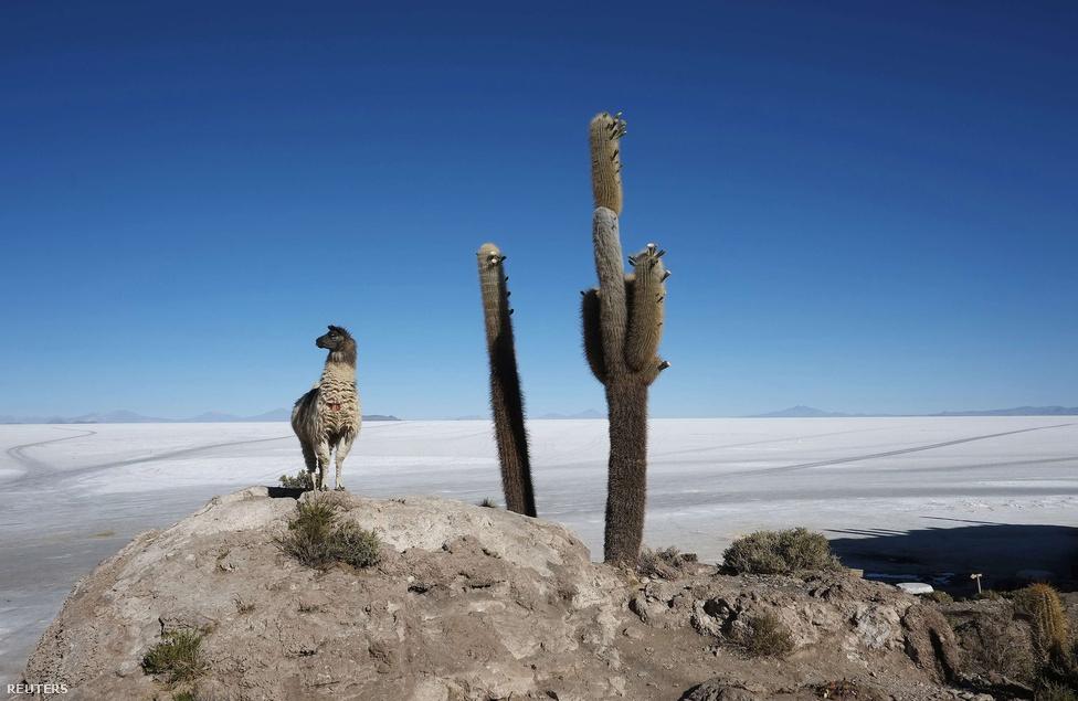 A háromszög bolíviai területe a Salar de Uyuni, a világ legnagyobb kiterjedésű és egyben legmagasabban fekvő felszíni sómezője.