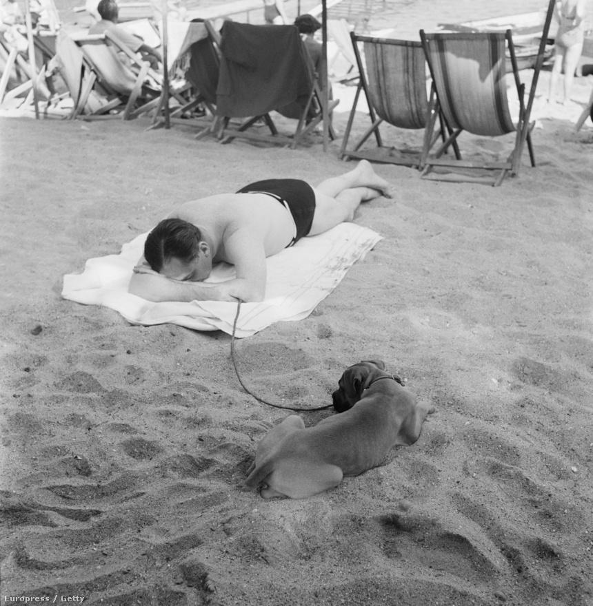 Napfürdőző férfi és kutyája az olasz Paraggi Beach-en (1952).