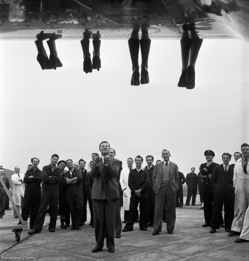 A Miss World szépségverseny résztvevői alulnézetben (1953).