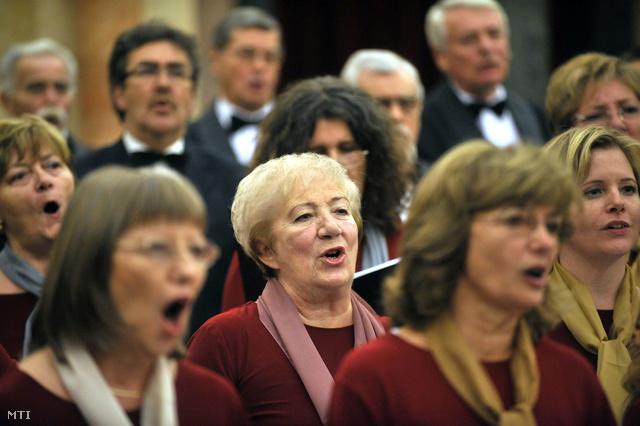 A Szená-torok koncetrje 2011 novemberében