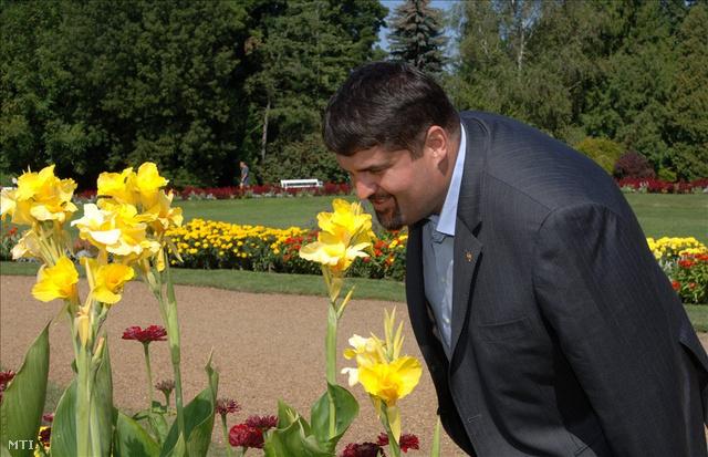 2008. augusztus 25. Hagyó Miklós a Margit szigeti egynyári virágbemutatón.