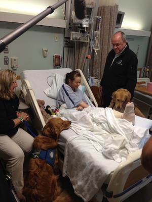 Terápiás kutyák munka közben