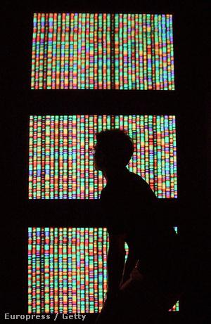A humán genom digitális reprezentációja