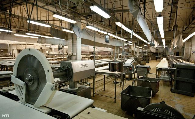 A kapuvári húsüzem bontócsarnoka 2012. november 20-án. Egy hónappal a Kapuvári Hús Zrt. után elbocsátja dolgozóit az üzemet működtető másik társaság a Kapuvári Bacon Kft. is, amiből úgy tűnik, a húskombinátban már nem fog újraindulni a termelés.