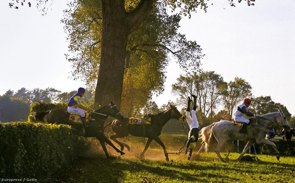 Radek Havelka cseh zsoké esik le Iraklion nevű lováról a 115. Pardubicei Nagydíjon  2005. október 9-én. A Pardubicei Nagydíj a világ egyik legnehezebb lovas akadályversenye.