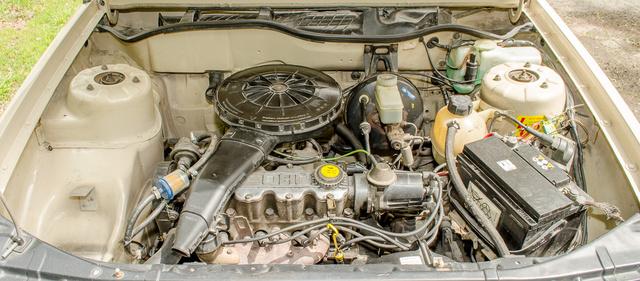 DSC 0370