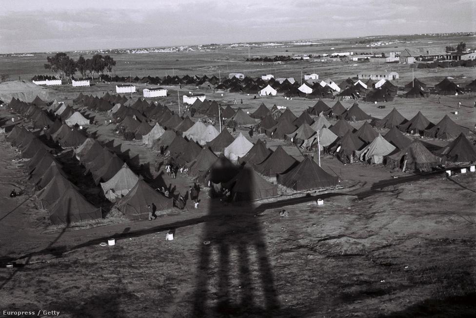 Őrtorony árnyéka vetül az újonnan érkezetteknek felállított ideiglenes tábor felett, 1949. december 1-jén, Beit Lidnél. Az első években tömegesen érkeztek zsidók más országokból Izraelbe, a lakosság száma pedig olyan hirtelen megugrott, hogy több százezer embert csak ideiglenes táborokban tudtak elhelyezni.