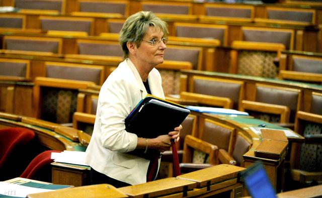 Hoffmann Rózsa köznevelésért felelős államtitkár.