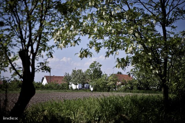 Told a TSZ-korszak végéig virágzó falu volt, de aztán a termelést nagy mezőgazdasági cégek vették át, és szinte mindenki elvesztette a munkáját.