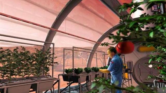 Nehézkes lenne a növénytermesztés