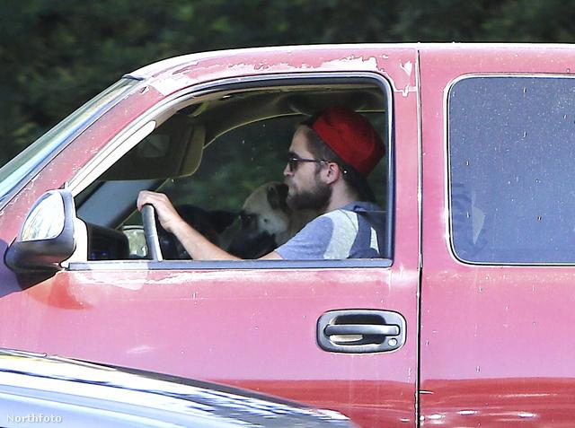 Pattinson vitte a kutyát...