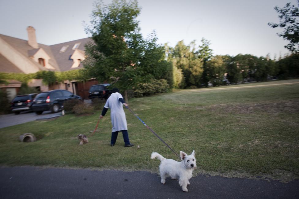 A kutyasétáltatás természetesen a személyzet dolga.