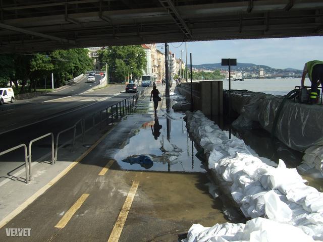 Buzgárok az Erzsébet híd alatt.