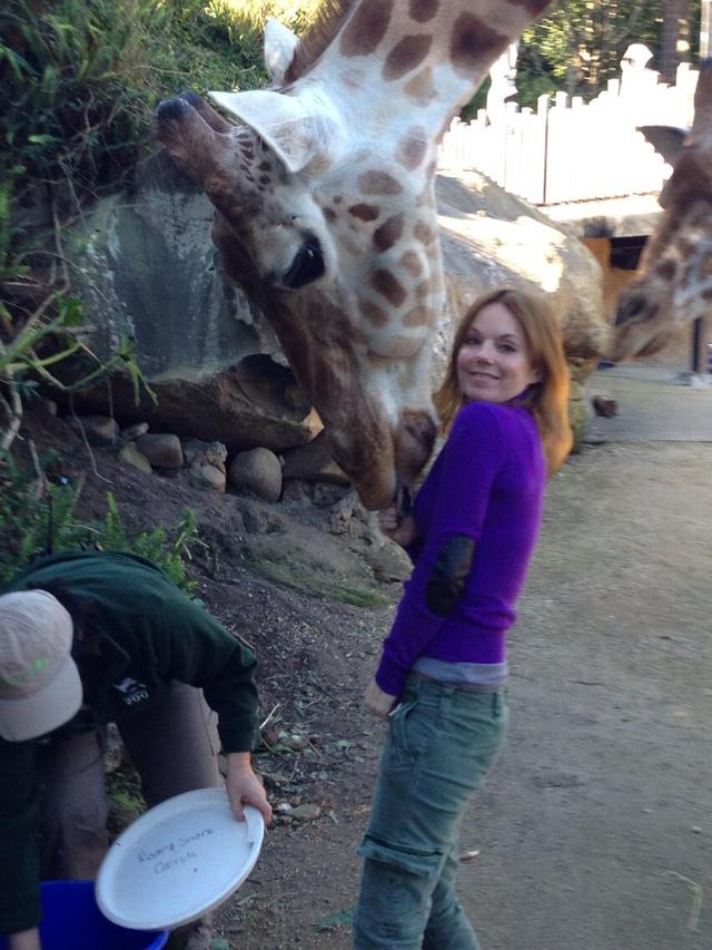 Geri Halliwell esete a zsiráffal
